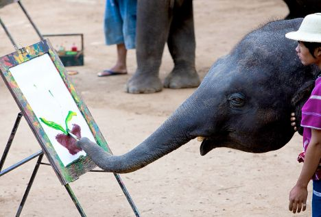 TOURISTS MARVEL AT ELEPHANT ARTIST IN THAILAND