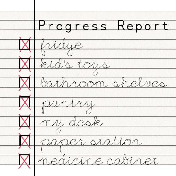progressreport