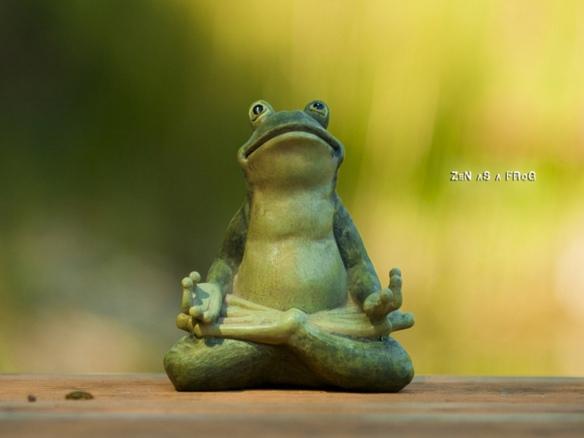 zen_as_a_frog