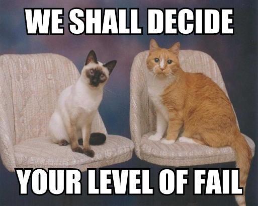 FAIL-Cats-We-shall-decide