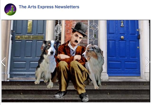 chaplin newsletter